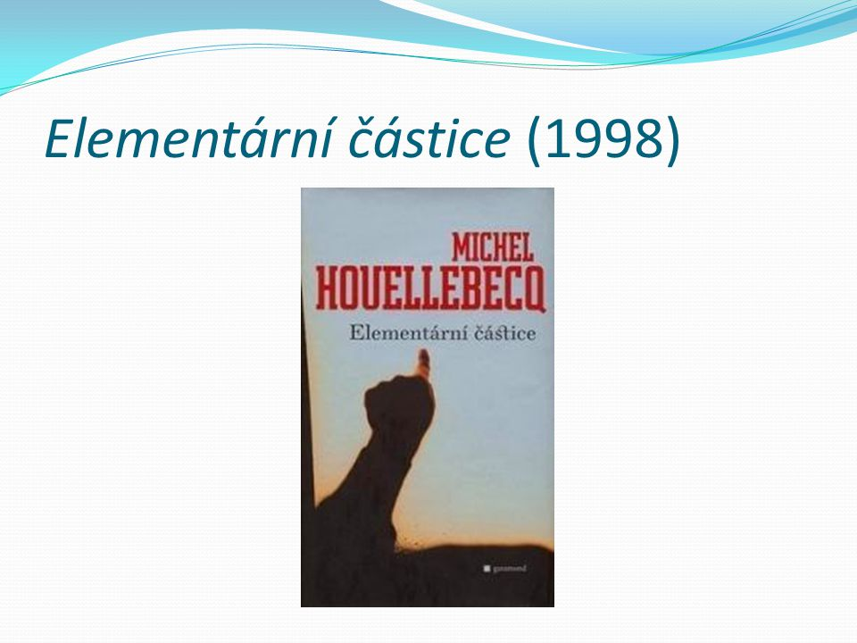Elementární částice (1998)