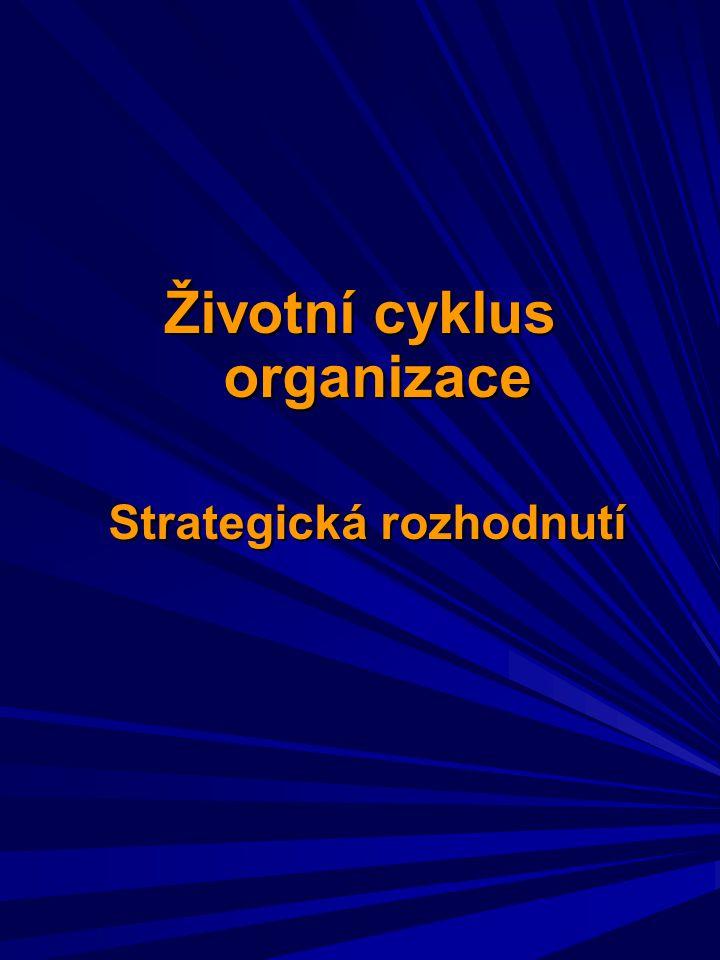 Životní cyklus organizace Strategická rozhodnutí Strategická rozhodnutí