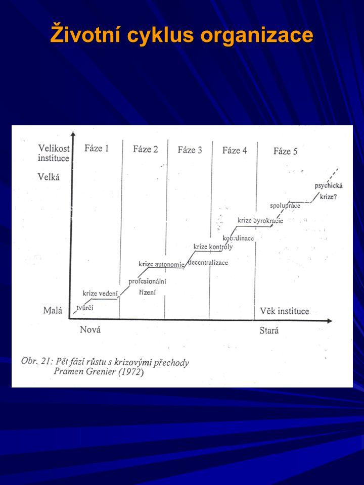 Životní cyklus organizace