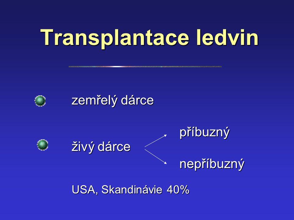 Transplantace ledvin zemřelý dárce živý dárce příbuzný nepříbuzný USA, Skandinávie 40%