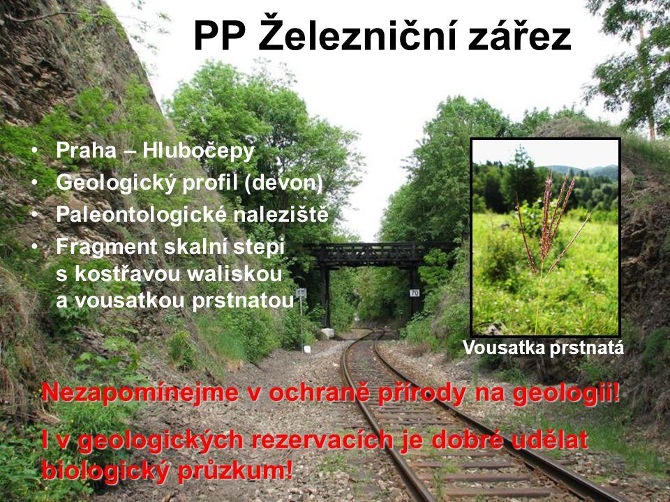 PP Železniční zářez Praha – Hlubočepy Geologický profil (devon) Paleontologické naleziště Fragment skalní stepi s kostřavou waliskou a vousatkou prstn