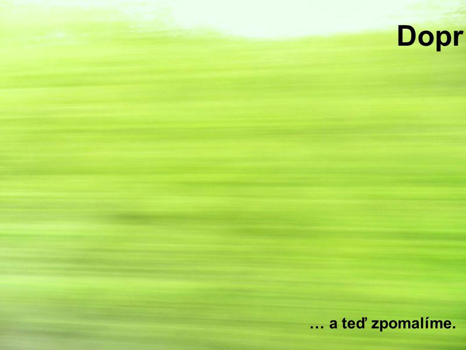 Výsadby dřevin Je třeba zvážit, zda jsou nutné (zejména souvislé pásy) V blízkosti zástavby, intravilánech a v případě navedení na migrační koridory mají svoje opodstatnění Ve volné krajině je vhodné posoudit případ od případu Dávat přednost původním druhům Biokoridor může být i stepní!