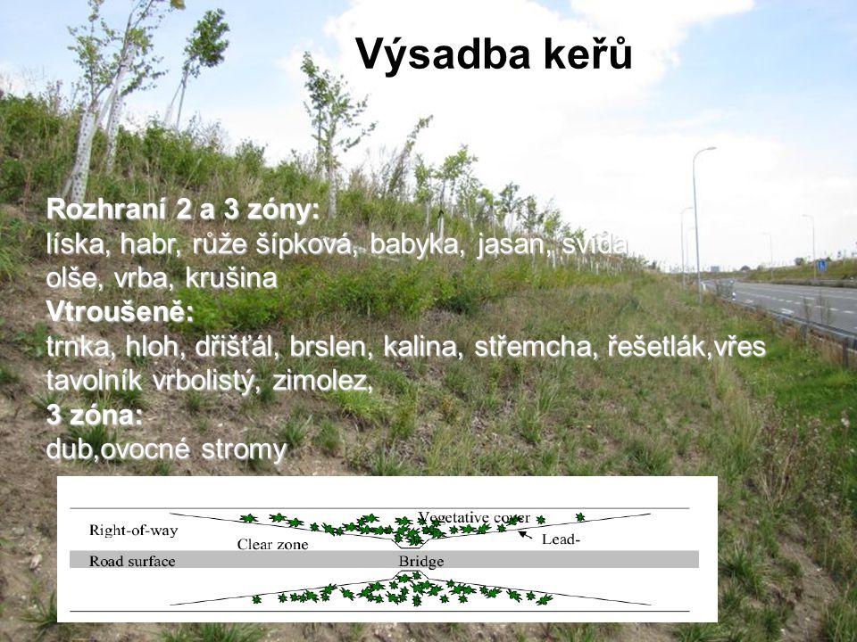 Rozhraní 2 a 3 zóny: líska, habr, růže šípková, babyka, jasan, svída, olše, vrba, krušina Vtroušeně: trnka, hloh, dřišťál, brslen, kalina, střemcha, řešetlák,vřes tavolník vrbolistý, zimolez, 3 zóna: dub,ovocné stromy Výsadba keřů