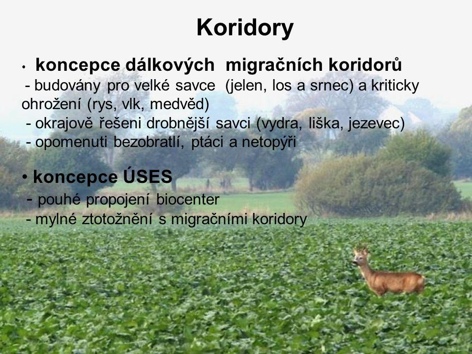 Koridory koncepce dálkových migračních koridorů - budovány pro velké savce (jelen, los a srnec) a kriticky ohrožení (rys, vlk, medvěd) - okrajově řešeni drobnější savci (vydra, liška, jezevec) - opomenuti bezobratlí, ptáci a netopýři koncepce ÚSES - pouhé propojení biocenter - mylné ztotožnění s migračními koridory