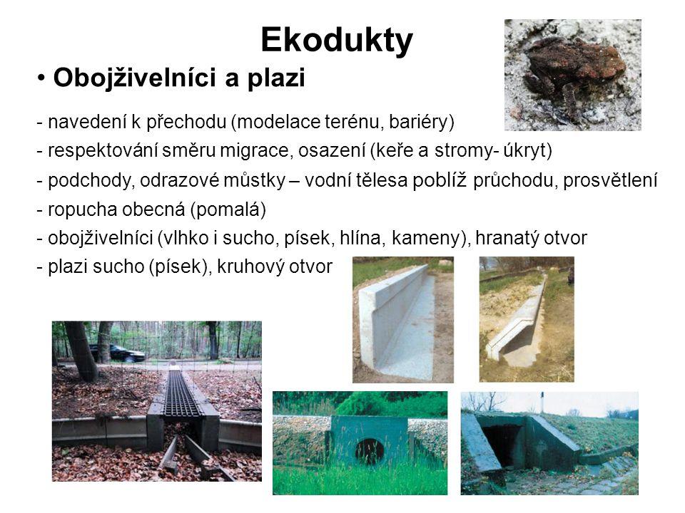 Ekodukty Obojživelníci a plazi - navedení k přechodu (modelace terénu, bariéry) - respektování směru migrace, osazení (keře a stromy- úkryt) - podchody, odrazové můstky – vodní tělesa poblíž průchodu, prosvětlení - ropucha obecná (pomalá) - obojživelníci (vlhko i sucho, písek, hlína, kameny), hranatý otvor - plazi sucho (písek), kruhový otvor