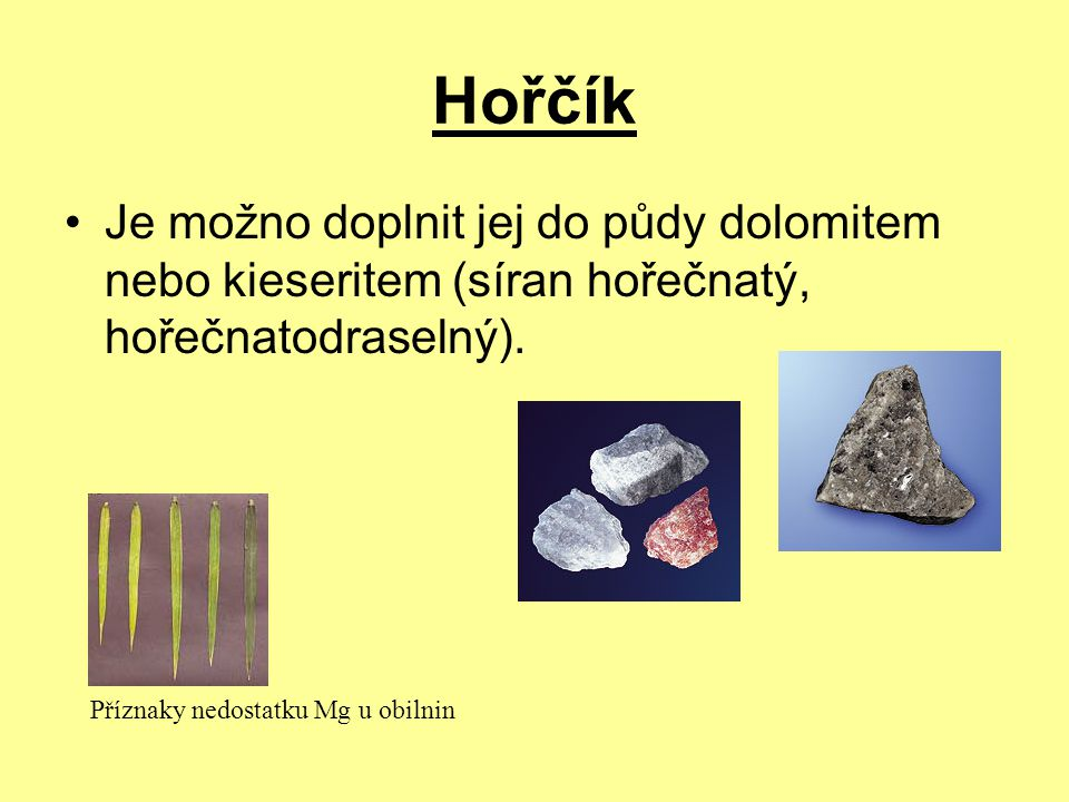 Hořčík Je možno doplnit jej do půdy dolomitem nebo kieseritem (síran hořečnatý, hořečnatodraselný). Příznaky nedostatku Mg u obilnin