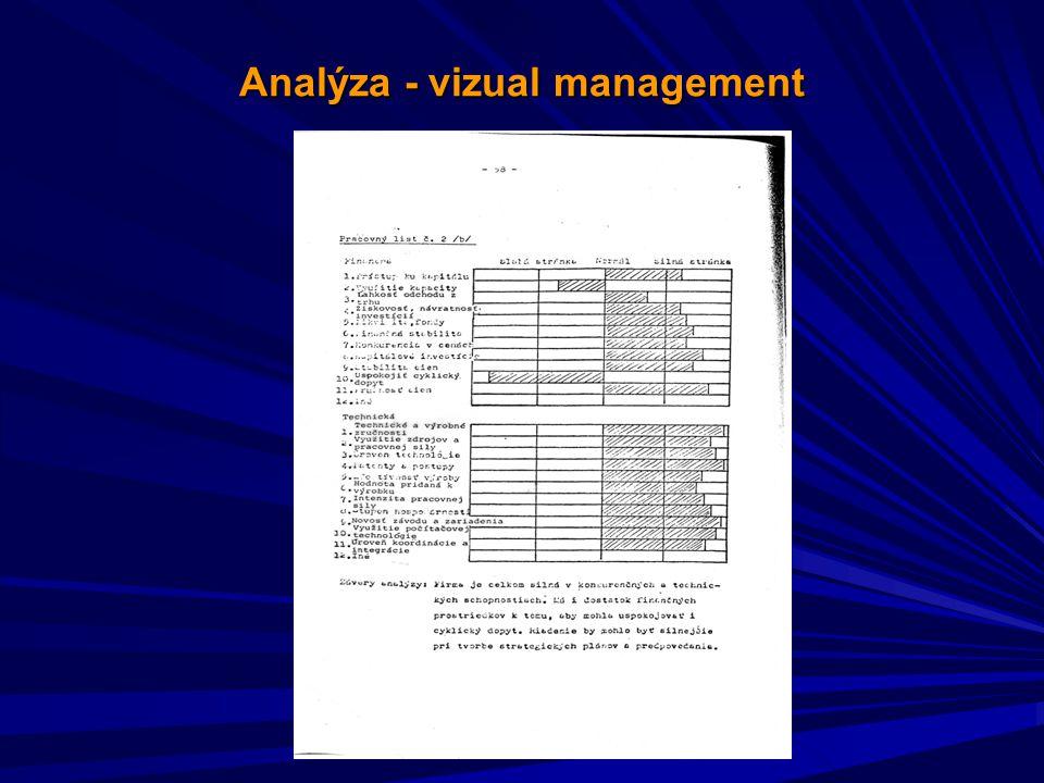 Analýza - vizual management