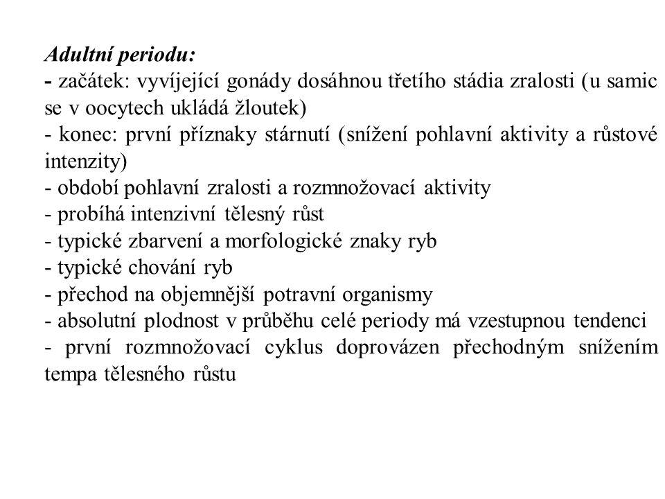 Adultní periodu: - začátek: vyvíjející gonády dosáhnou třetího stádia zralosti (u samic se v oocytech ukládá žloutek) - konec: první příznaky stárnutí