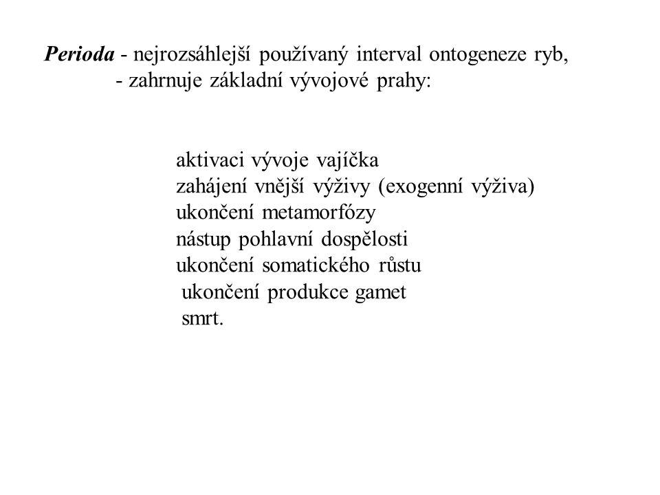Fáze- pomocný vývojový interval druhořadého charakteru - používá se ke členění period - Embryonální perioda - ovulární fáze (rýhující se vajíčko) - embryonální fáze (zárodek uvnitř vaječných obalů) - eleuterembryonální fáze (volný zárodek, váčkový plůdek).