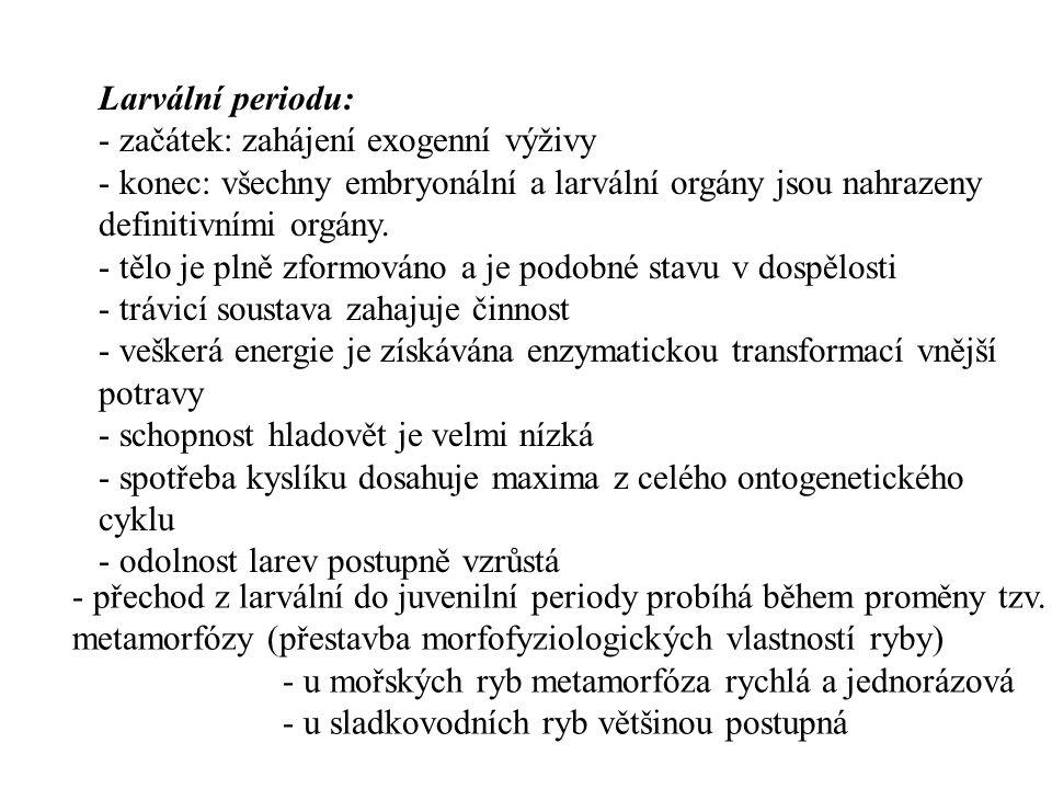 Larvální periodu: - začátek: zahájení exogenní výživy - konec: všechny embryonální a larvální orgány jsou nahrazeny definitivními orgány. - tělo je pl