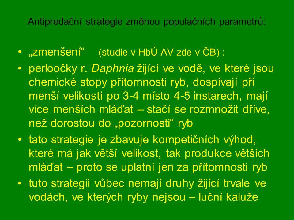 """Antipredační strategie změnou populačních parametrů: """"zmenšení"""" (studie v HbÚ AV zde v ČB) : perloočky r. Daphnia žijící ve vodě, ve které jsou chemic"""