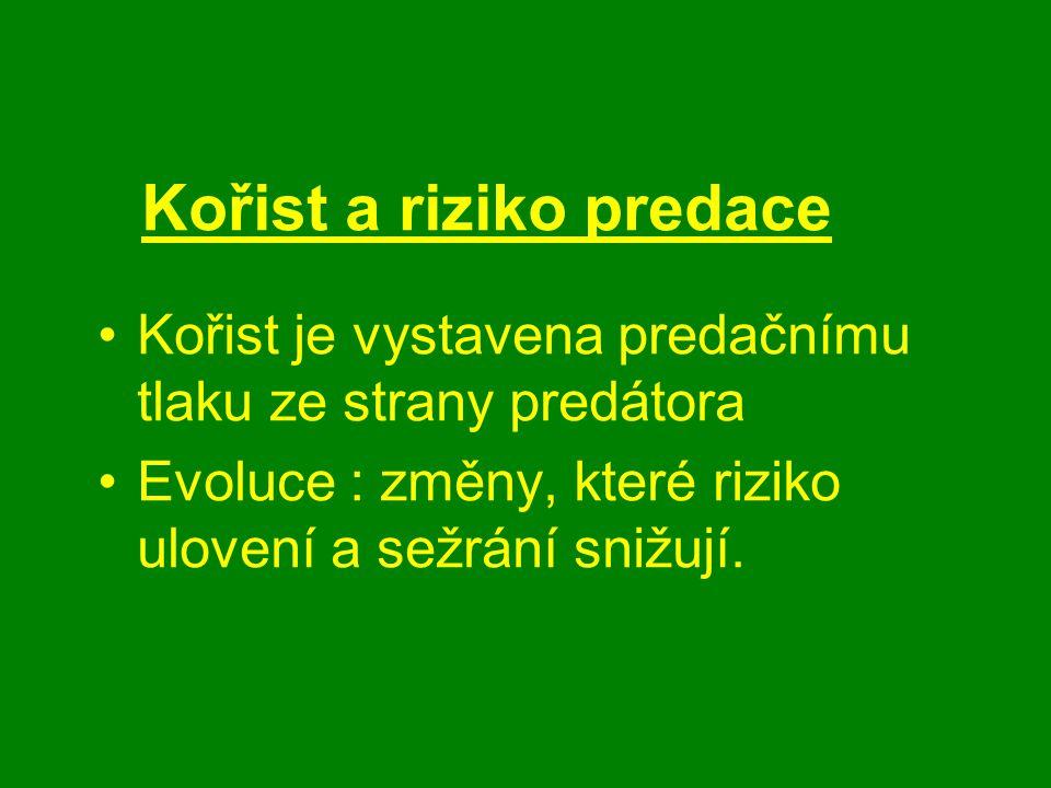 Kořist a riziko predace Kořist je vystavena predačnímu tlaku ze strany predátora Evoluce : změny, které riziko ulovení a sežrání snižují.