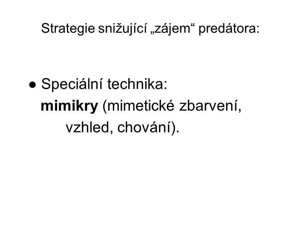 """● Speciální technika: mimikry (mimetické zbarvení, vzhled, chování). Strategie snižující """"zájem"""" predátora:"""