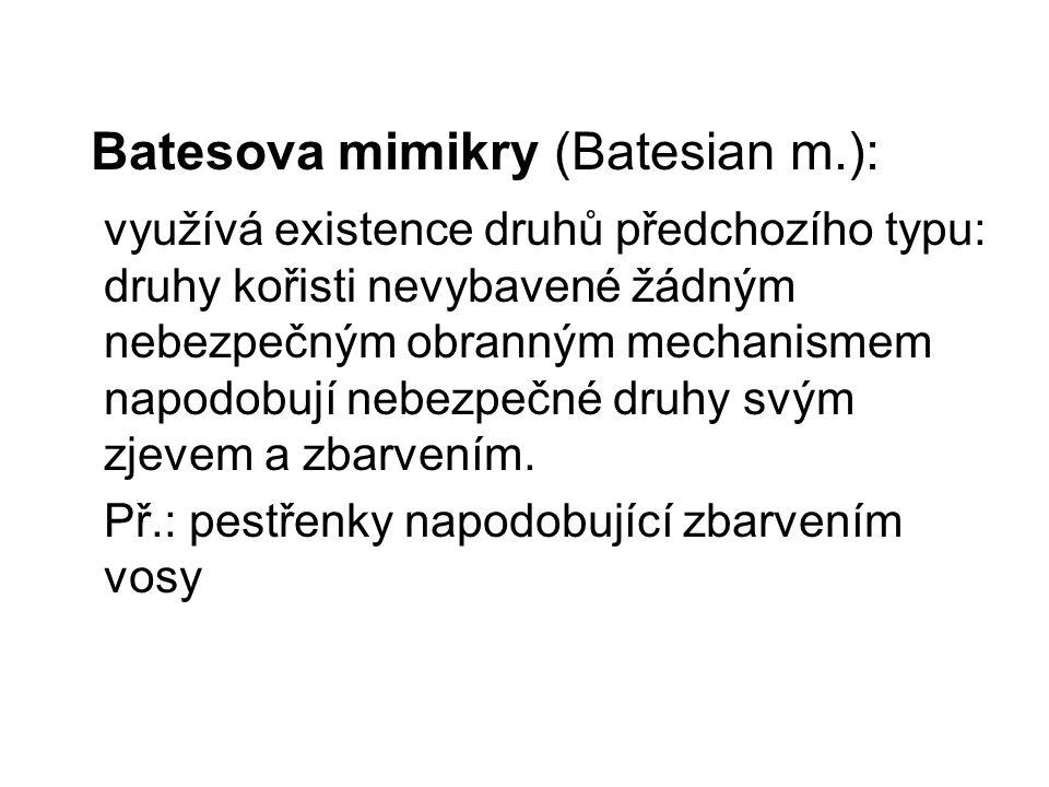 Batesova mimikry (Batesian m.): využívá existence druhů předchozího typu: druhy kořisti nevybavené žádným nebezpečným obranným mechanismem napodobují