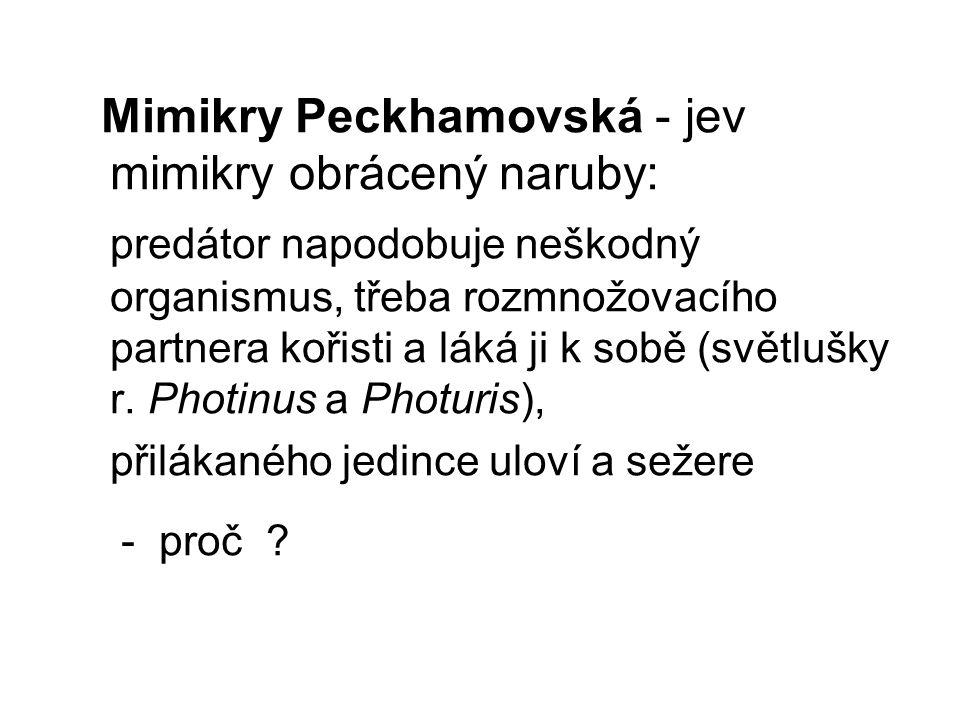 Mimikry Peckhamovská - jev mimikry obrácený naruby: predátor napodobuje neškodný organismus, třeba rozmnožovacího partnera kořisti a láká ji k sobě (s