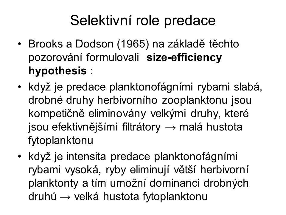 Selektivní role predace Další podobné situace: - Sanni a Waervagen (1990) v Norsku Lake Movatn, síh Coregonus lavaretus cca 100 kg.ha -1, zooplankton : vířníci až 3.000.l -1, průhlednost 1,7 m, chlorofyl-a 0,023, P 0,044, N 0,65 (vše mg.l -1 ) po odstranění Coregonus a vysazení pstruhů ( Salmo trutta, Oncorhynchus mykiss ) cca 65 ind.ha -1, : zooplankton : Daphnia galeata 40 – 80 ind.l -1, další korýši, průhlednost až do dna 2,6 m, chlorofyl-a 0,007, P 0,023, N 0,33 (vše mg.l -1 )