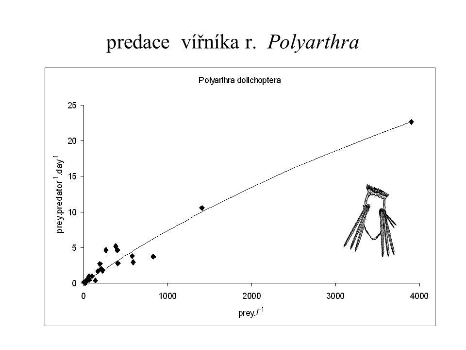 predace vířníka r. Polyarthra