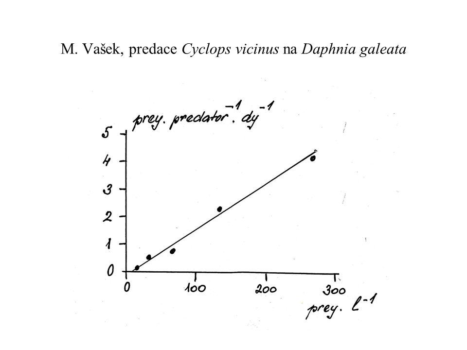 M. Vašek, predace Cyclops vicinus na Daphnia galeata