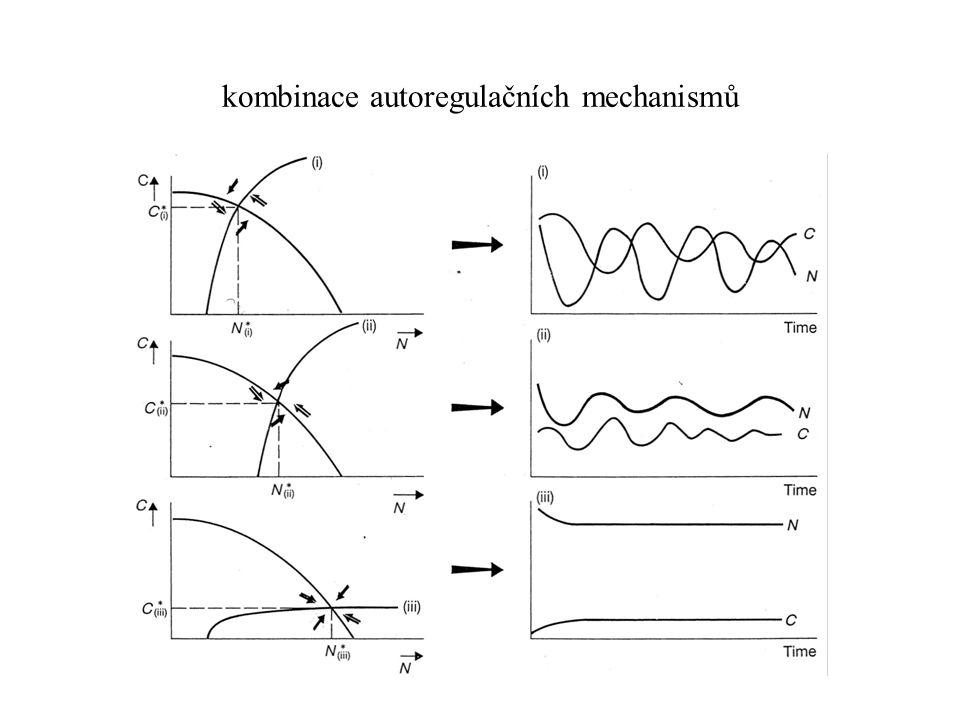 kombinace autoregulačních mechanismů