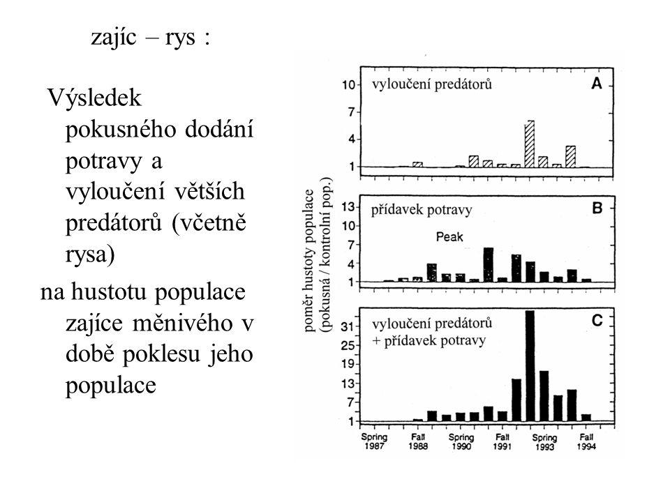 zajíc – rys : Výsledek pokusného dodání potravy a vyloučení větších predátorů (včetně rysa) na hustotu populace zajíce měnivého v době poklesu jeho po