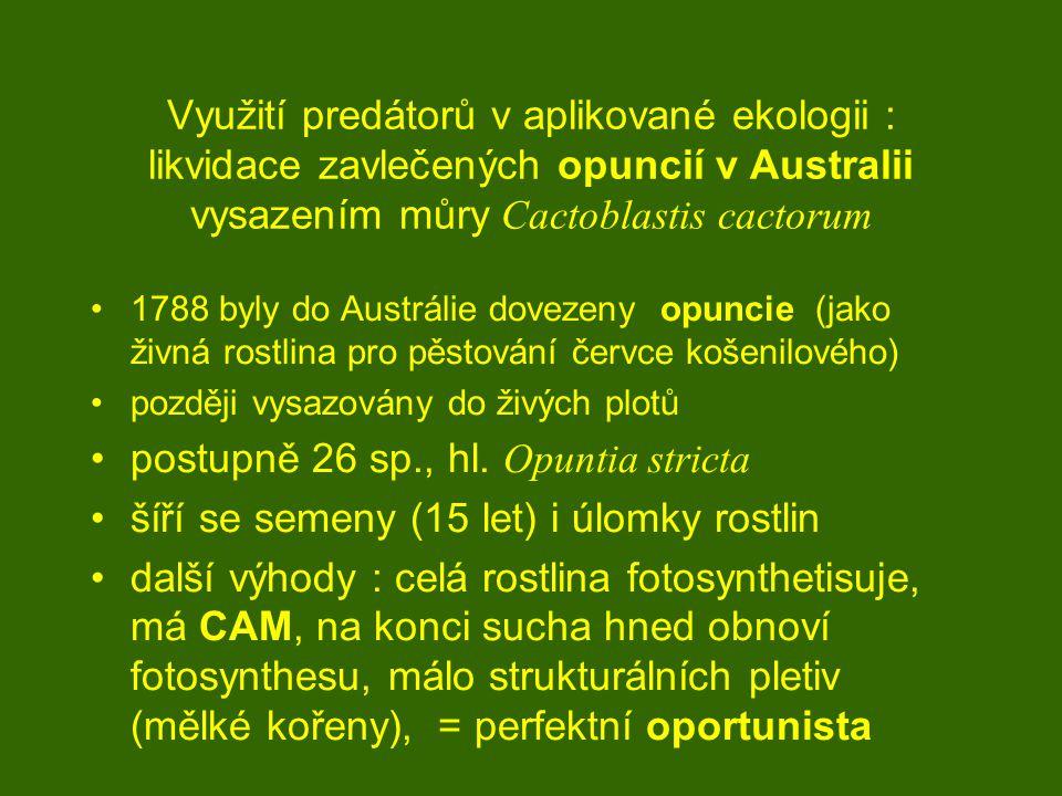 Využití predátorů v aplikované ekologii : likvidace zavlečených opuncií v Australii vysazením můry Cactoblastis cactorum 1788 byly do Austrálie dovezeny opuncie (jako živná rostlina pro pěstování červce košenilového) později vysazovány do živých plotů postupně 26 sp., hl.
