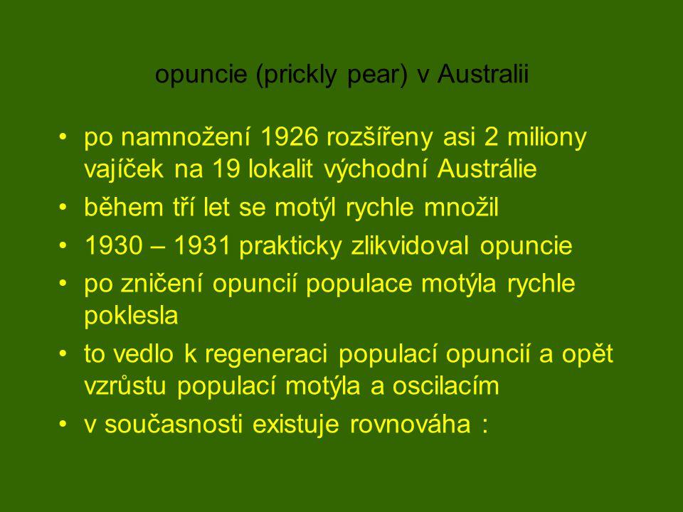 opuncie (prickly pear) v Australii po namnožení 1926 rozšířeny asi 2 miliony vajíček na 19 lokalit východní Austrálie během tří let se motýl rychle množil 1930 – 1931 prakticky zlikvidoval opuncie po zničení opuncií populace motýla rychle poklesla to vedlo k regeneraci populací opuncií a opět vzrůstu populací motýla a oscilacím v současnosti existuje rovnováha :