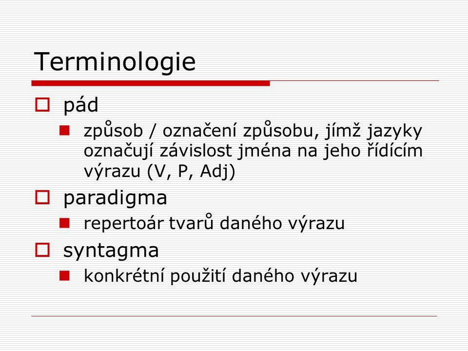 Terminologie  pád způsob / označení způsobu, jímž jazyky označují závislost jména na jeho řídícím výrazu (V, P, Adj)  paradigma repertoár tvarů daného výrazu  syntagma konkrétní použití daného výrazu