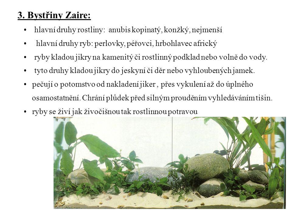 3. Bystřiny Zaire: hlavní druhy rostliny: anubis kopinatý, konžký, nejmenší hlavní druhy ryb: perlovky, péřovci, hrbohlavec africký ryby kladou jikry