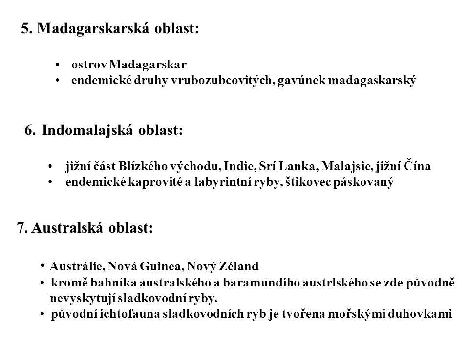 6.Indomalajská oblast: jižní část Blízkého východu, Indie, Srí Lanka, Malajsie, jižní Čína endemické kaprovité a labyrintní ryby, štikovec páskovaný 5