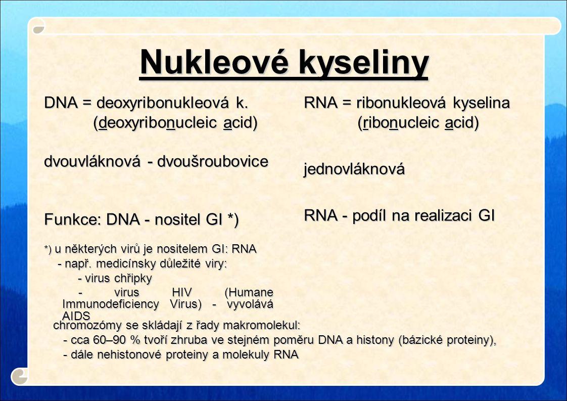 Nukleové kyseliny DNA = deoxyribonukleová k. (deoxyribonucleic acid) (deoxyribonucleic acid) dvouvláknová - dvoušroubovice Funkce: DNA - nositel GI *)