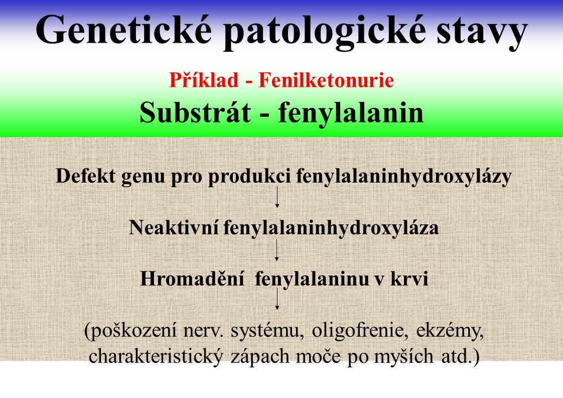 Příklad - Fenilketonurie Substrát - fenylalanin Genetické patologické stavy Defekt genu pro produkci fenylalaninhydroxylázy Neaktivní fenylalaninhydro