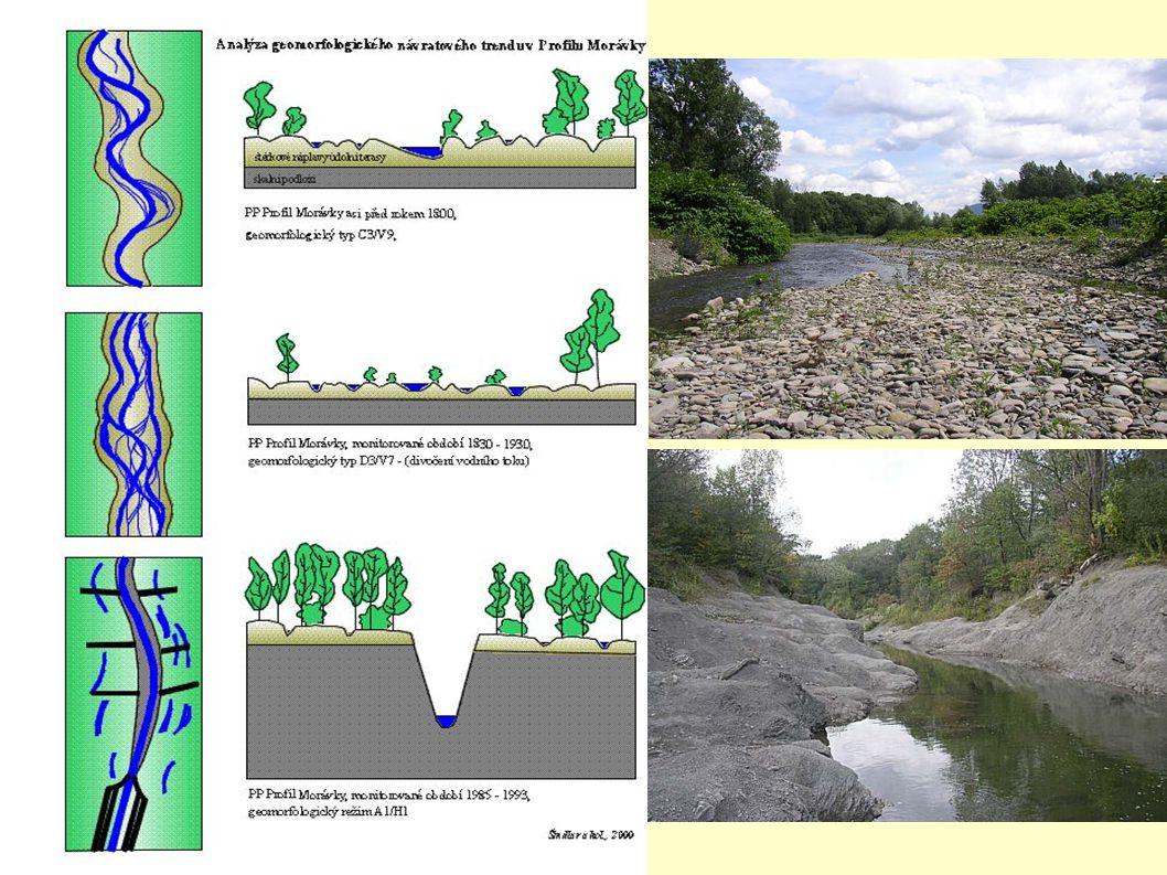 Něco pro přírodu PP Profil Morávky - zahloubené koryto vzniklo nutností držet vodu v úzkém profilu (vedení potrubí) NPR Skalická Morávka - při povodn