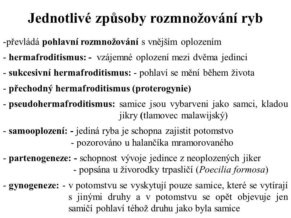 Umělý výtěr - umělá inseminace: - používá se není-li možné oplození přirozenou cestou (dlouhoploutvé formy) - hodně se používá u živorodých ryb (čeleď Poeciliidae) - hypofyzace: - preparátem se ovlivní činnost adenohypofýzy - nejvíce zkušeností je s použitím gonadotropních hormonů podáním hypofýzy (měla by pocházet ze stejného či příbuzného druhu, používá se hypofýza kapra, cejna, sumce, piskoře) - použití analogů spouštěcího hormonu gonatropinu GnRH: - Kobarelin a Supergestran (učiná látka lecirelin) - dávkování (od 5 μg.kg -1 - do 100 μg.kg -1 )