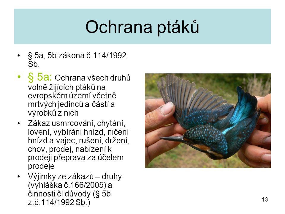 Ochrana ptáků § 5a, 5b zákona č.114/1992 Sb. § 5a: Ochrana všech druhů volně žijících ptáků na evropském území včetně mrtvých jedinců a částí a výrobk