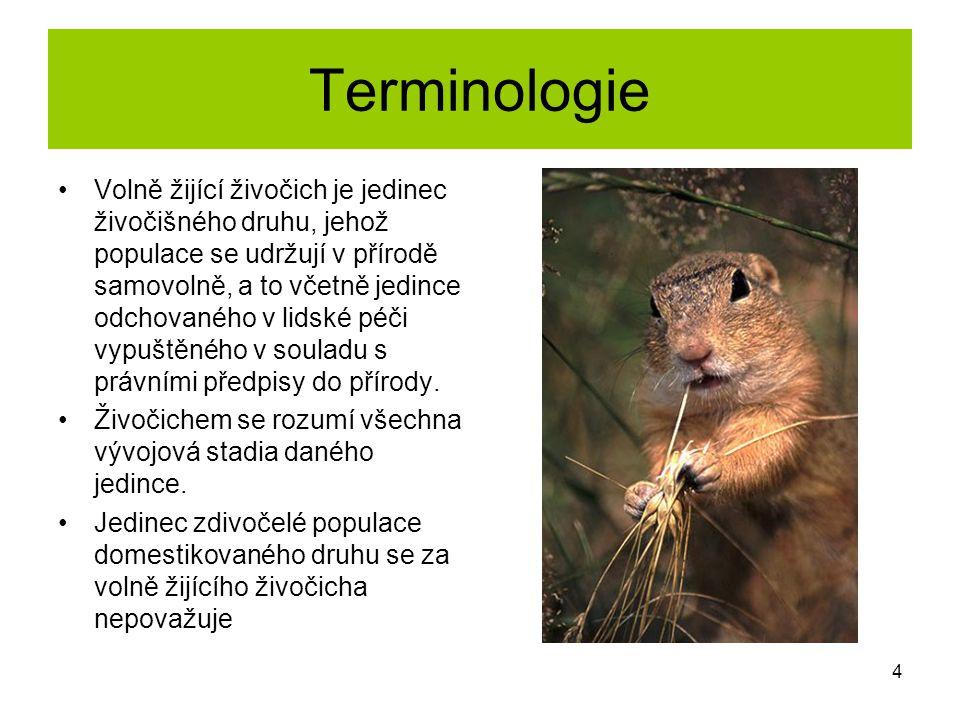 Terminologie Volně žijící živočich je jedinec živočišného druhu, jehož populace se udržují v přírodě samovolně, a to včetně jedince odchovaného v lids