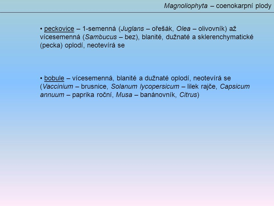 Magnoliophyta – coenokarpní plody peckovice – 1-semenná (Juglans – ořešák, Olea – olivovník) až vícesemenná (Sambucus – bez), blanité, dužnaté a sklerenchymatické (pecka) oplodí, neotevírá se bobule – vícesemenná, blanité a dužnaté oplodí, neotevírá se (Vaccinium – brusnice, Solanum lycopersicum – lilek rajče, Capsicum annuum – paprika roční, Musa – banánovník, Citrus)