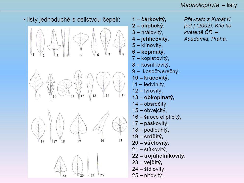 listy jednoduché s celistvou čepelí: Magnoliophyta – listy 1 – čárkovitý, 2 – eliptický, 3 – hrálovitý, 4 – jehlicovitý, 5 – klínovitý, 6 – kopinatý, 7 – kopisťovitý, 8 – kosníkovitý, 9 – kosočtverečný, 10 – kracovitý, 11 – ledvinitý, 12 – lyrovitý, 13 – obkopinatý, 14 – obsrdčitý, 15 – obvejčitý, 16 – široce eliptický, 17 – páskovitý, 18 – podlouhlý, 19 – srdčitý, 20 – střelovitý, 21 – štítkovitý, 22 – trojúhelníkovitý, 23 – vejčitý, 24 – šídlovitý, 25 – niťovitý.