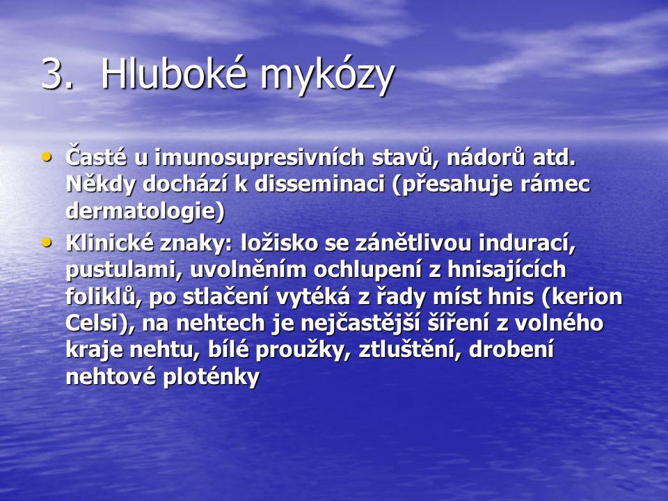 3.1 Cryptococcosis Etiologie: vyvolána plísní Cryptococcus neoformans Etiologie: vyvolána plísní Cryptococcus neoformans Klinické znaky: variabilní projev- papuly, pustuly, vesikuly, abscesy, ulcerace, podkožní noduly, + systémové postižení (respirační trakt, CNS, kosti, prostata, ledviny, lymfatické uzliny), může generalizovat Klinické znaky: variabilní projev- papuly, pustuly, vesikuly, abscesy, ulcerace, podkožní noduly, + systémové postižení (respirační trakt, CNS, kosti, prostata, ledviny, lymfatické uzliny), může generalizovat Histologie: Okrouhlé spory, 4--12 µm s (ale jen 2- -4 µm bez) pouzdra.
