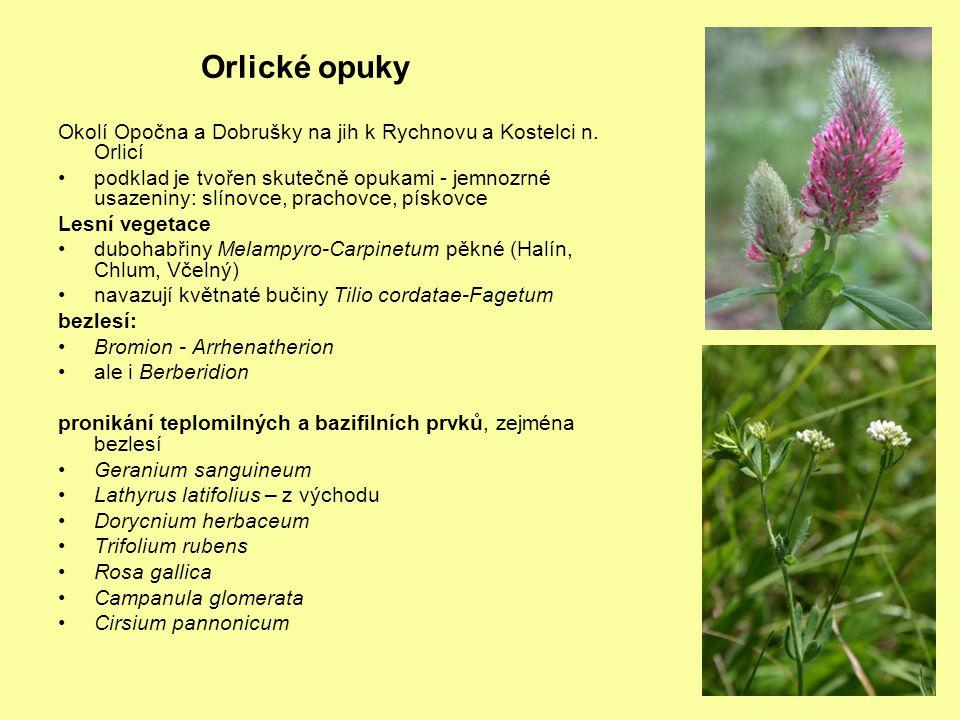 Orlické opuky Okolí Opočna a Dobrušky na jih k Rychnovu a Kostelci n.