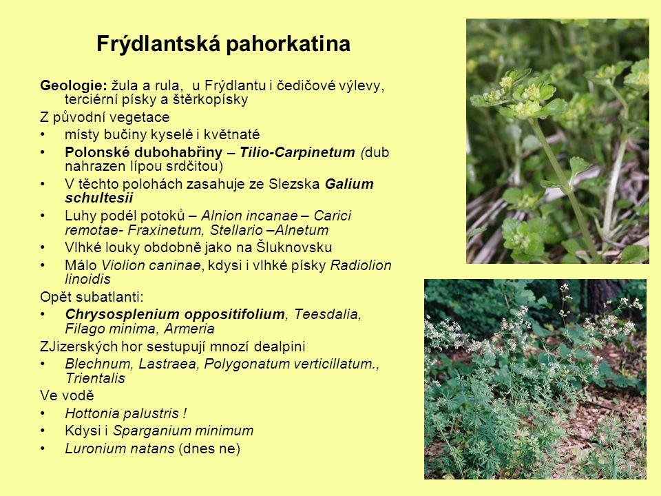 Olšiny – Novozámecký a Holanské rybníky – Carici elongatae-Alnetum Cicuta virosa Dryopteris cristata – v olšinách Thelypteris palustris Peucedanum palsutre Slatinné louky u Jestřebí – Shnilé louky, Slunečný dvůr, Konvalinkový vršek (Ledum palustre) Pinguicula bohemica Dactylorhiza bohemica – nezřetelné skvrny, dl.