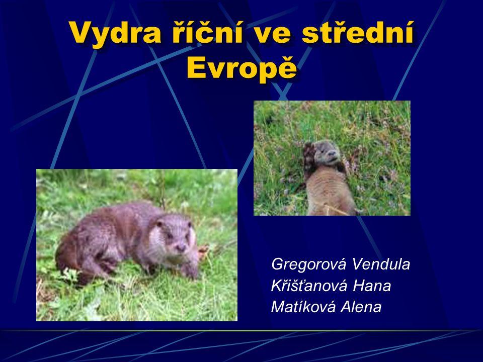 Vydra říční ve střední Evropě Gregorová Vendula Křišťanová Hana Matíková Alena