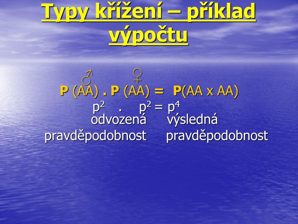 Typy křížení – příklad výpočtu P (AA). P (AA) = P(AA x AA) p 2. p 2 = p 4 odvozená výsledná p 2. p 2 = p 4 odvozená výsledná pravděpodobnost pravděpod