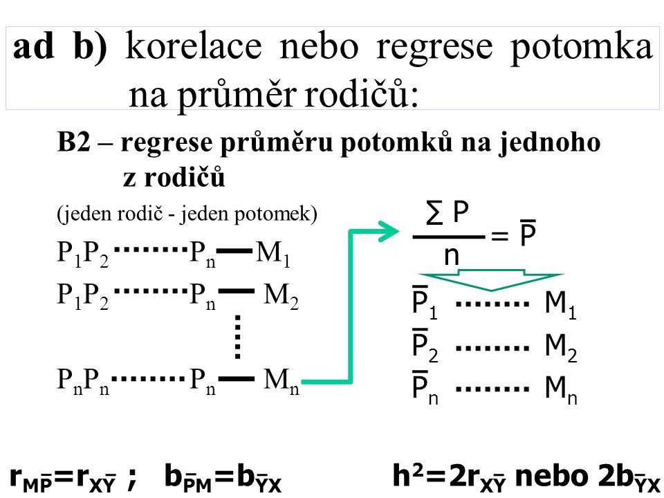 ad b) korelace nebo regrese potomka na průměr rodičů: B2 – regrese průměru potomků na jednoho z rodičů (jeden rodič - jeden potomek) P 1 P 2 P n M 1 P