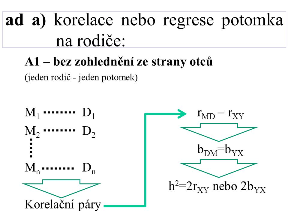 ad a) korelace nebo regrese potomka na rodiče: A2 – při zohlednění ze strany otců (jeden rodič - jeden potomek) Modifikovaný výpočet r XY nebo b YX ale stejně h 2 =2r XY nebo 2b YX