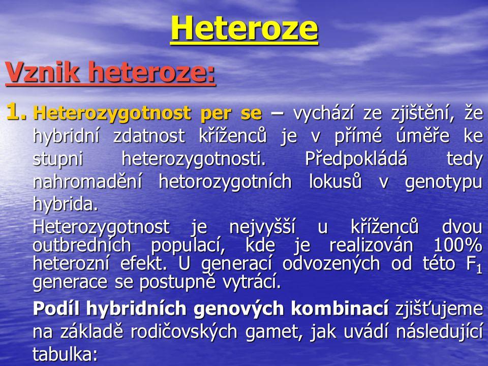 Heteroze 1. Heterozygotnost per se – vychází ze zjištění, že hybridní zdatnost kříženců je v přímé úměře ke stupni heterozygotnosti. Předpokládá tedy