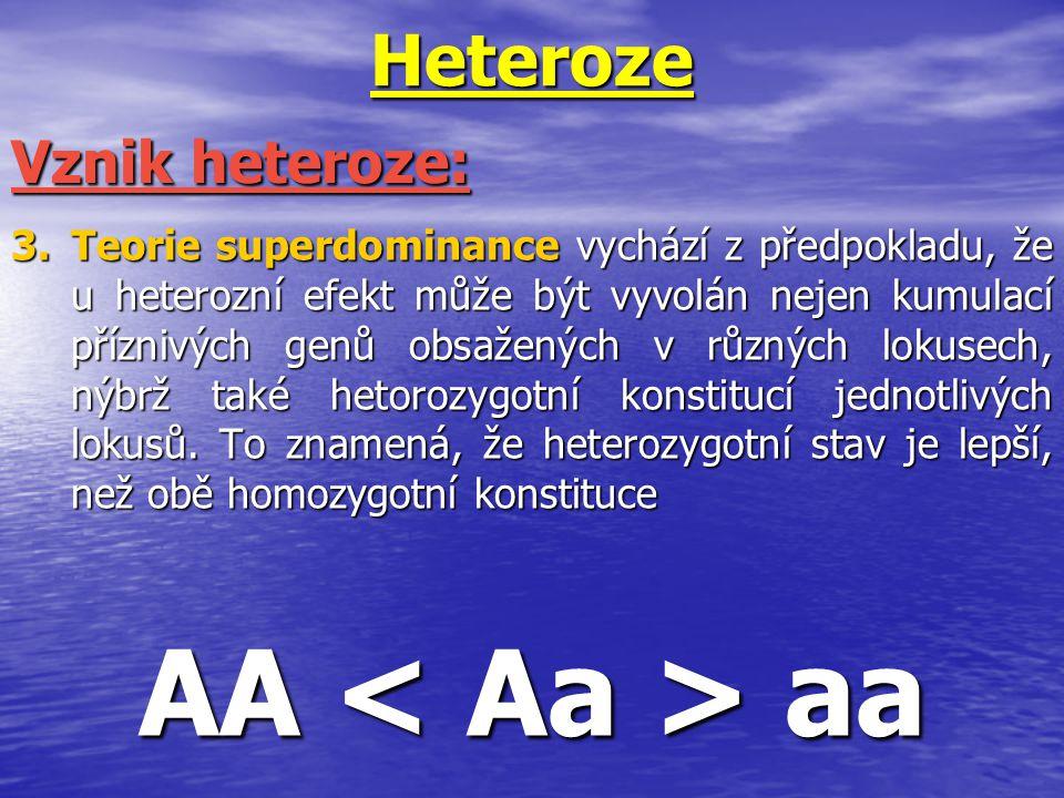 Heteroze 3.Teorie superdominance vychází z předpokladu, že u heterozní efekt může být vyvolán nejen kumulací příznivých genů obsažených v různých loku