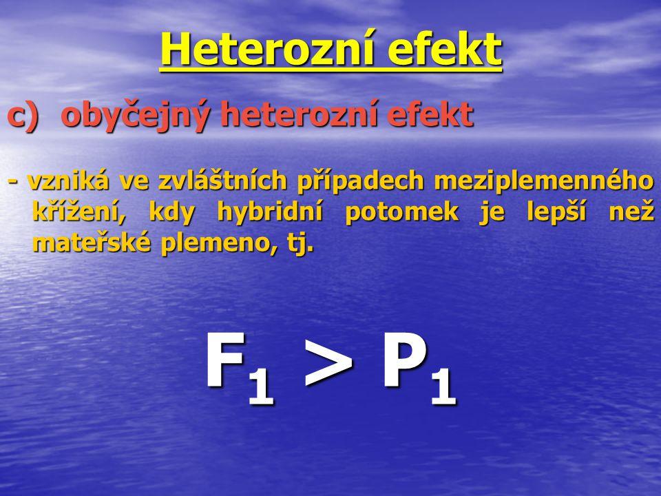 Heterozní efekt - vzniká ve zvláštních případech meziplemenného křížení, kdy hybridní potomek je lepší než mateřské plemeno, tj. F 1 > P 1 c)obyčejný