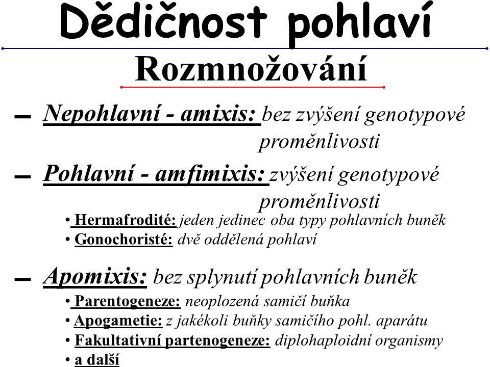 Rozmnožování Dědičnost pohlaví ▬ Nepohlavní - amixis: bez zvýšení genotypové proměnlivosti ▬ Pohlavní - amfimixis: zvýšení genotypové proměnlivosti ▬