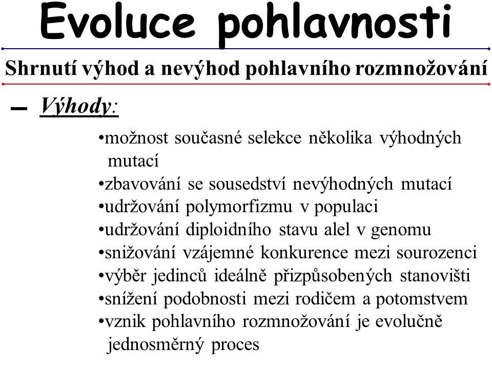 možnost současné selekce několika výhodných mutací zbavování se sousedství nevýhodných mutací udržování polymorfizmu v populaci udržování diploidního