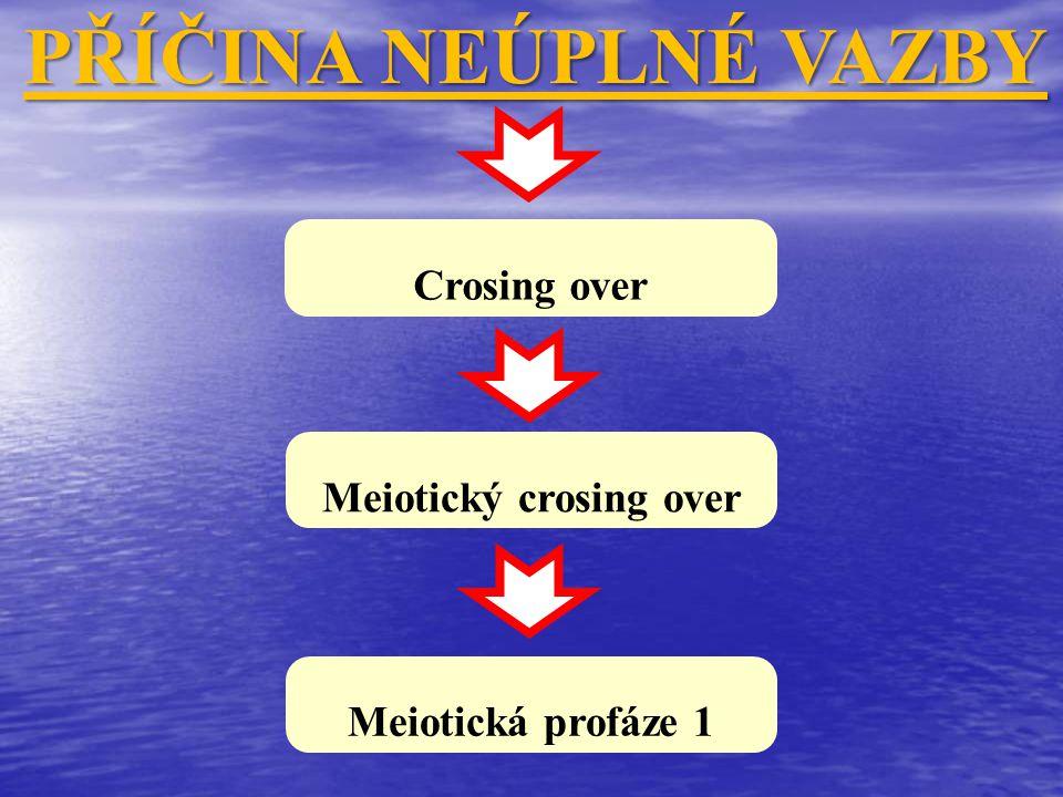 Crosing over PŘÍČINA NEÚPLNÉ VAZBY Meiotický crosing over Meiotická profáze 1